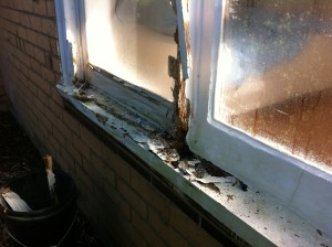 Don't be stuck with this get your rotten timber window replaced.